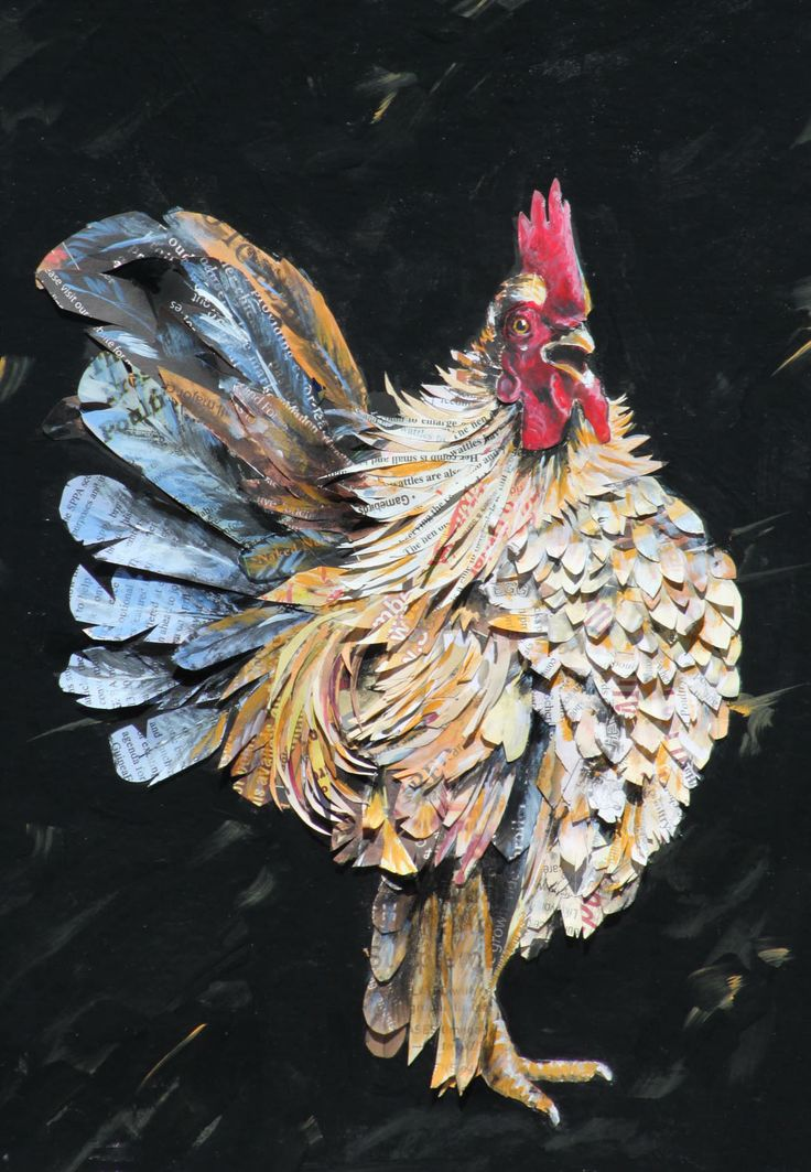 Frizzled Serama rooster