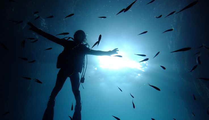 The Oki Islands: Diving and Discovering the Sea of Japan