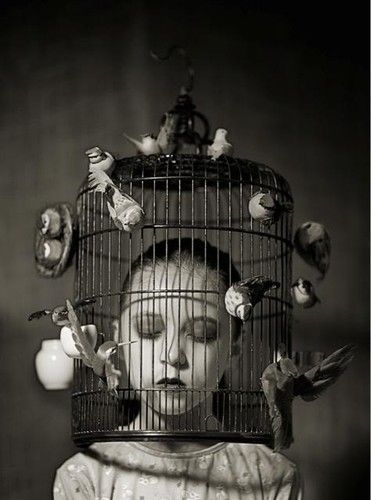 Grant Lee Buffalo - Mockingbirds: Girls, Idea, Birds Cages, Cages Birds, Birds Of Paradis, Black And White, Art, Birdcages, Photography People