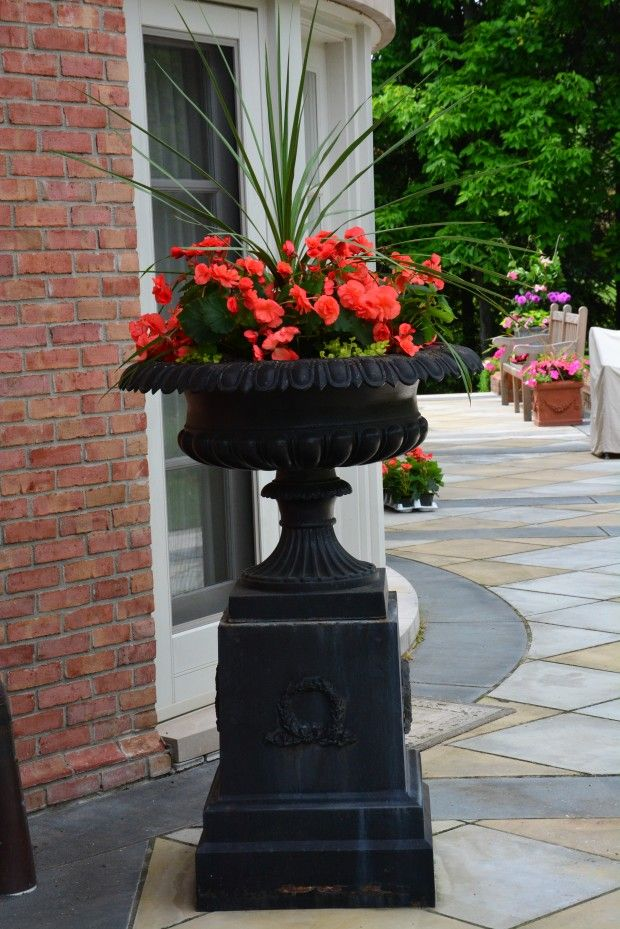 100 ideas to try about flowers gardens containers for Perennial container garden designs