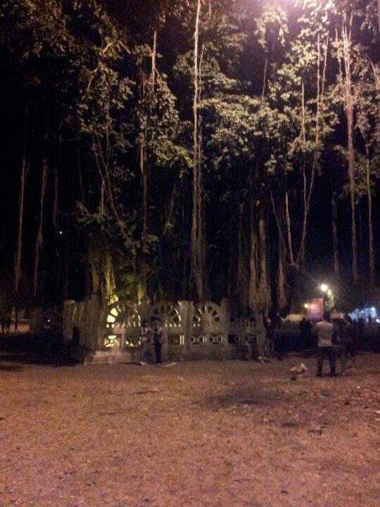 Alun - Alun Kidul di Yogyakarta, DI Yogyakarta