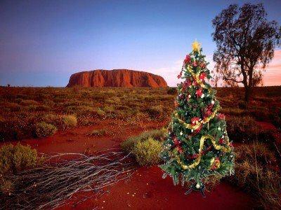 #christmas tree at #uluru #australia #christmas