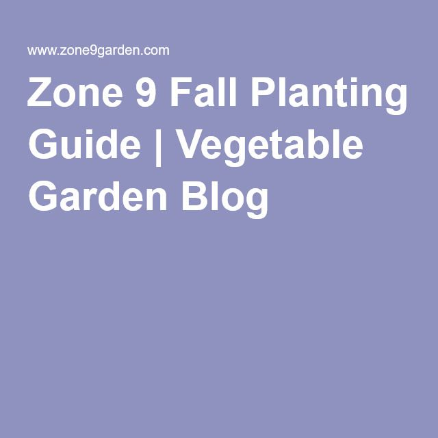 Zone 9 Fall Planting Guide | Vegetable Garden Blog