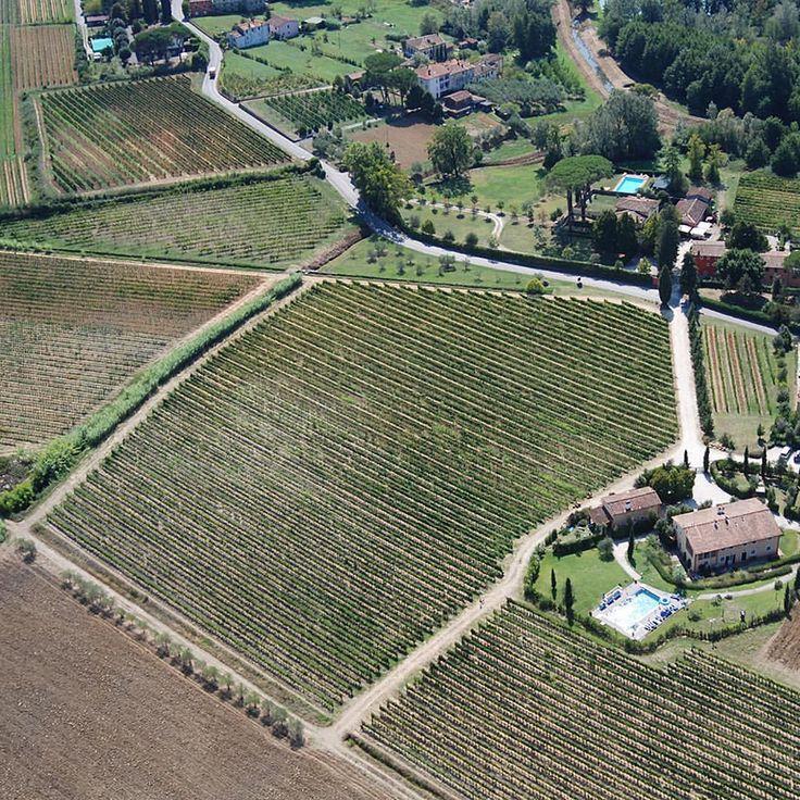 @fattoriasardi #viewfromabove #collinelucchesi #lucca #toscana #organic #winery #vineyards #enjoy