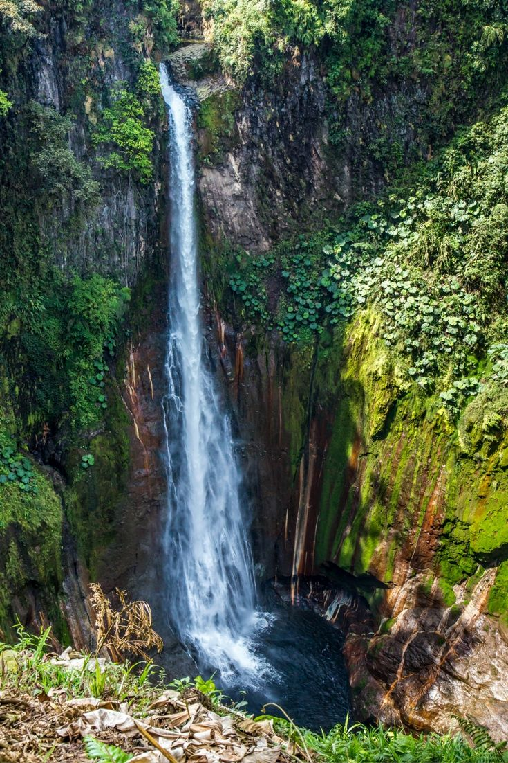 Catarata del Toro - A 270 Foot Beauty in the Central Valley