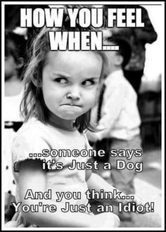 Yes!!!! I hate when say this because they care for us way more then we care for them. I love babies. #chihuahuadaily #teacupdogs #teacupchihuahua