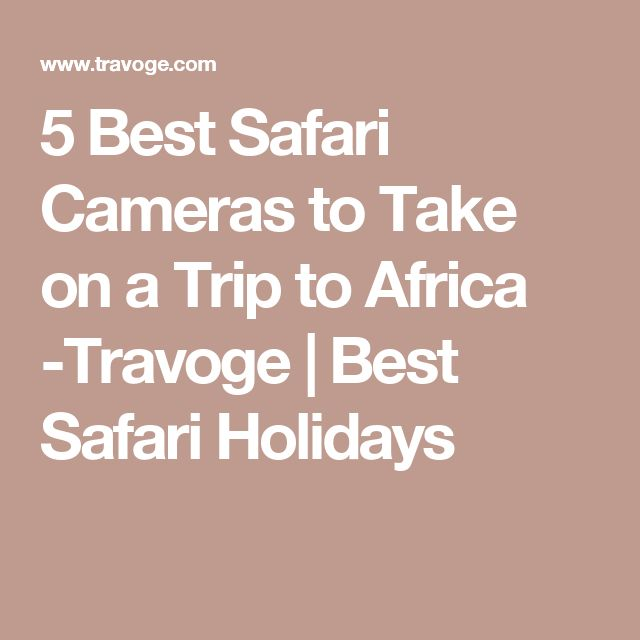 5 Best Safari Cameras to Take on a Trip to Africa -Travoge | Best Safari Holidays