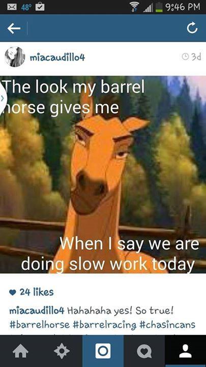 That is soooo true and i have a barrel horse
