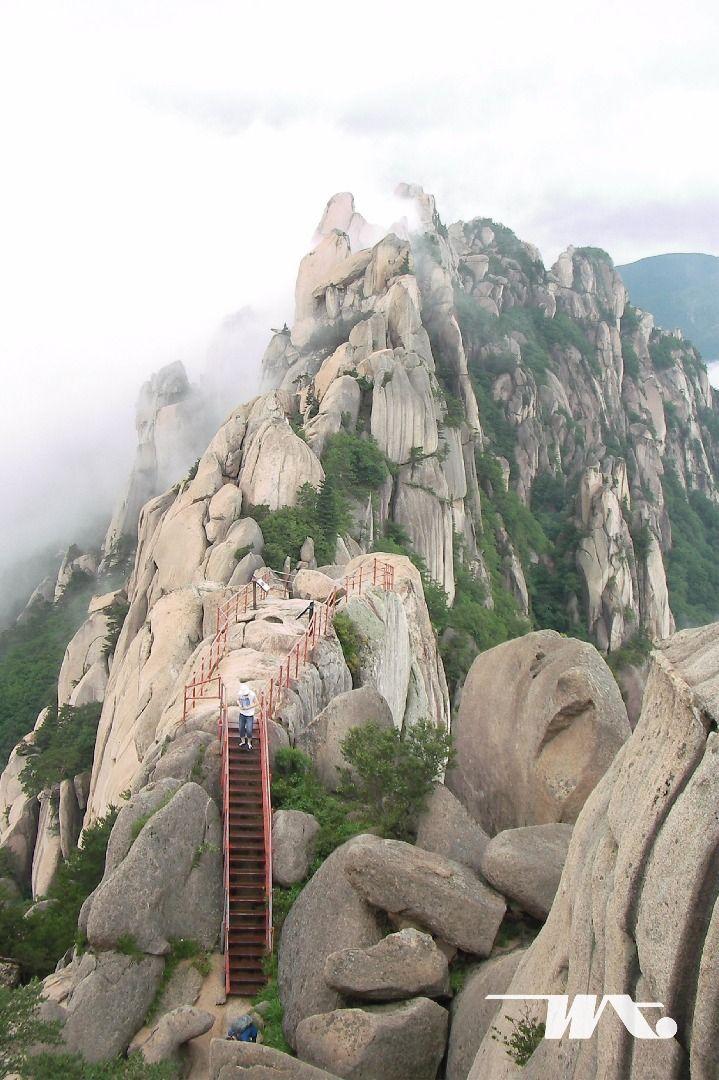 Sebagai salah satu gunung terfavorit bagi turis lokal maupun mancanegara yang datang ke Korea Selatan. Biasanya Gunung Seoraksan selalu masuk di dalam list destinasi traveler. Banyak cara untuk datang ke gunung ini karena bisa diakses dari beragam tempat. Terdapat jalan atau tangga buatan untuk mencapai puncak, bagi Anda yang tidak suka hiking tersedia cable car untuk mencapai ke puncak Gunung Seoraksan.