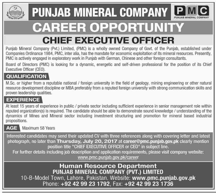 Punjab Mineral Company Pvt Limited Lahore Jobs Jobs In Pakistan - chief executive officer job description