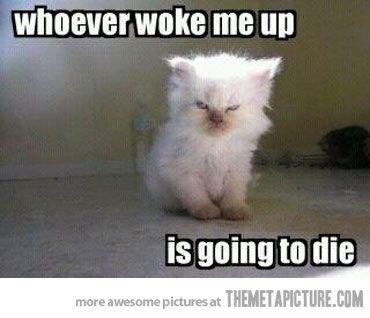 How I feel when I wake up!