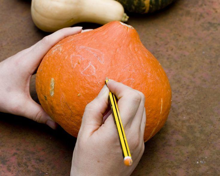 Paso 1: Usando el lápiz, dibuje su diseño en la calabaza. Presione ligeramente al principio hasta que quede satisfecho con el diseño y, a continuación, repase las líneas para definirlas con claridad.