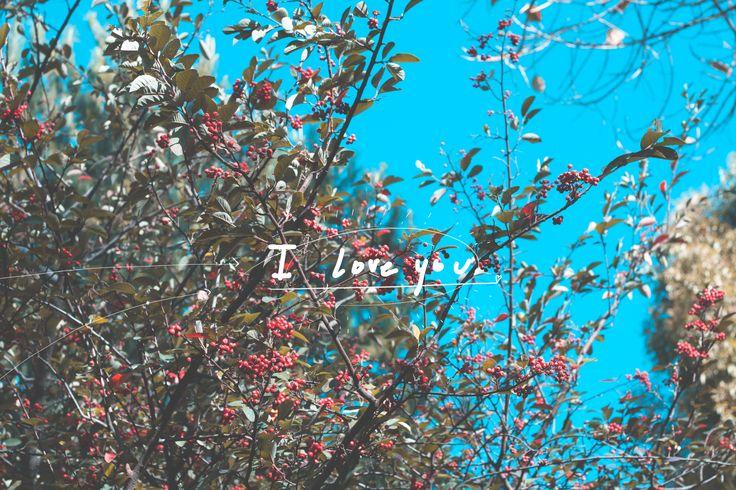 Amemos bonito que la vida está pasando muy rápido. #lasoto