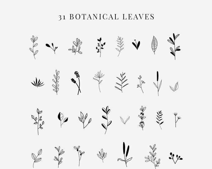Tableau Floral Clipart Clip Art Clipart Floral Craie Etsy Clip Art Alice In Wonderland Clipart How To Draw Hands