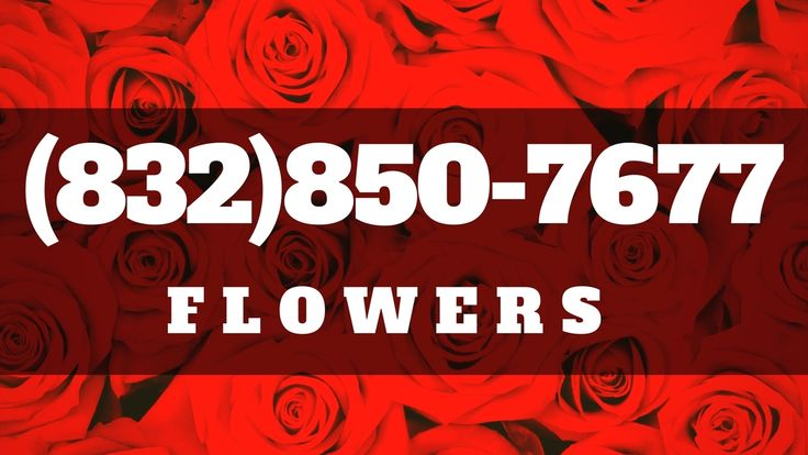 Top Florist Houston | Same Day Flower Delivery in Houston TX
