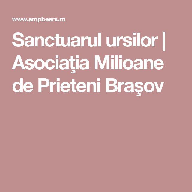 Sanctuarul ursilor | Asociaţia Milioane de Prieteni Braşov