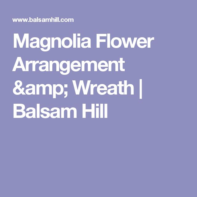 Magnolia Flower Arrangement & Wreath | Balsam Hill