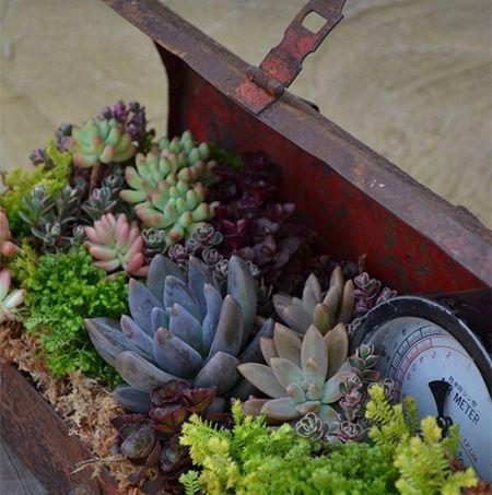old steel toolbox as flower planter