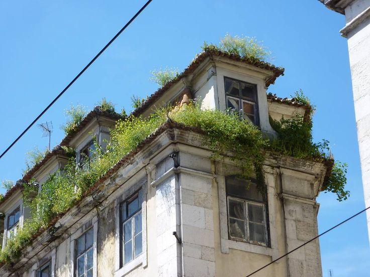 Fuzzy rooftops in Lisbon.  #euroscenes #travel #traveling #europetravel #traveleurope #europe #europeanvacation #lisbonscenes #lisbonlovers #lisbonportugal #travelbug #travelphotography #Lisbon #Portugal