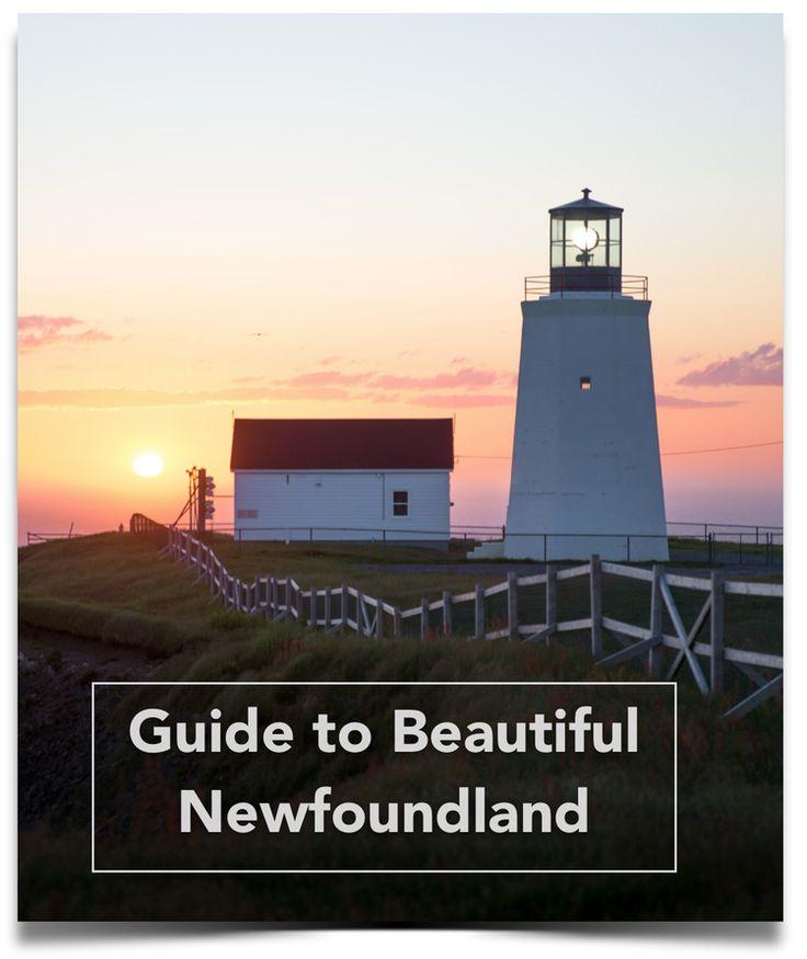 The Wild Newfoundland & Labrador — Katie Goldie