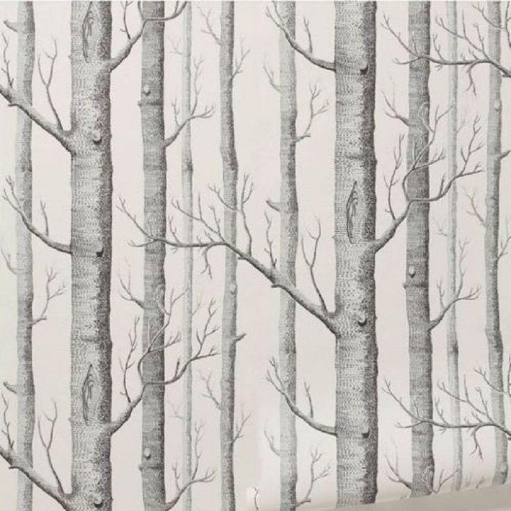les 25 meilleures idées de la catégorie papier peint bouleau sur