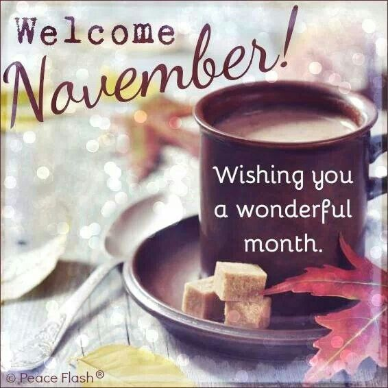 Welcome November! May all of you have a beautiful and joyful November.