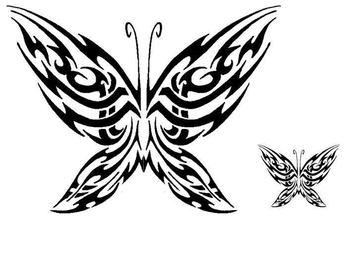 tribal butterfly tattoos - 736×520