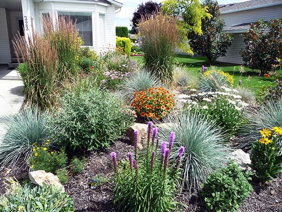Flower Garden Ideas For Small Yards uncategorized small flower garden ideas modern tritmonk outdoor garden Xeriscape Small Front Yard The Xeriscape Garden Early Summer 2010 Wayne S Vibrant Lush Xeriscape
