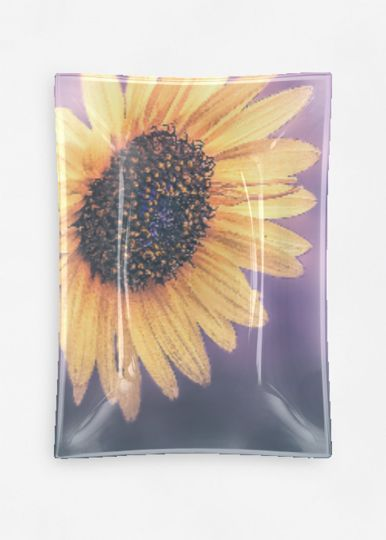 Statement Clutch - SUNFLOWER SEEDS by VIDA VIDA D1ffkuM
