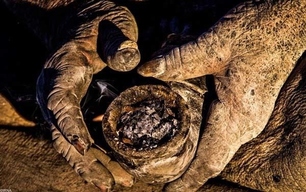 this 80 year old man has not taken a bath in 60 years just wait til you see him whoa