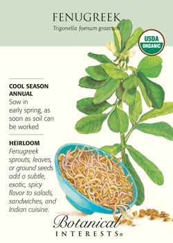 $1.99 Sprouts, leaves, or ground seeds add a subtle, exotic, spicy flavor to salads, sandwiches and Indian cuisine.