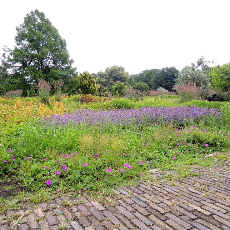 Bloemenborders in Park de Gagel.