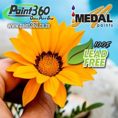 Check out our Medal Acrylic PVA Ceiling Paint and give your ceiling a revamp today.......  http://www.paint360.co.za/the-paint-shop/medal-quality-range/ceiling-paint