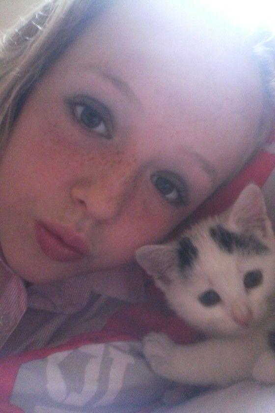Kitten sefie