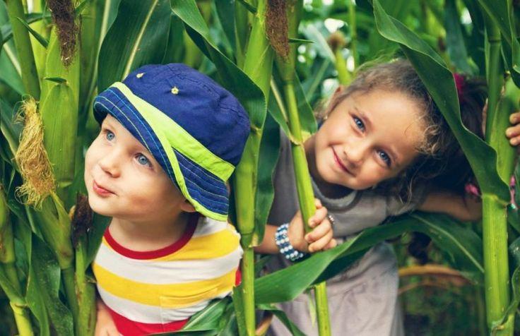 Αφήστε τα παιδιά σας να παίζουν έξω για πρόληψη της μυωπίας