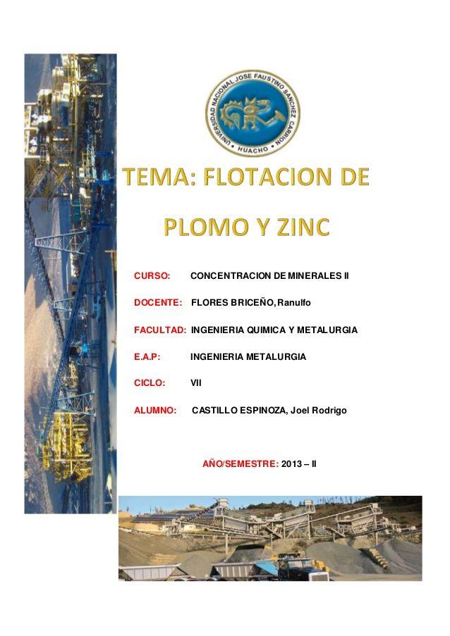 CURSO: CONCENTRACION DE MINERALES II  DOCENTE: FLORES BRICEÑO, Ranulfo  FACULTAD: INGENIERIA QUIMICA Y METALURGIA  E.A.P: ING...