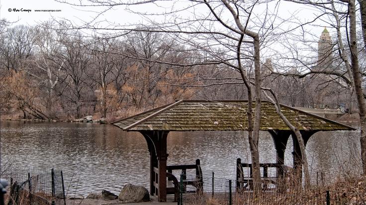 Lake - Central Park