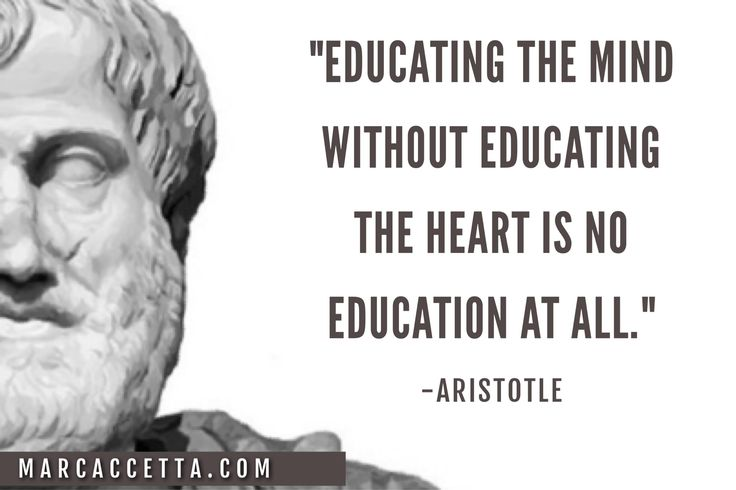 Tolerance And Apathy Are The Last Virtues Of A Dying: 25+ Best Aristotle Quotes Ideas On Pinterest