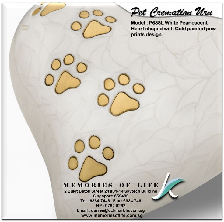 Express your love for your furry friend, one more time, with our very special Heart Urn 2016 collection in hand applied white Pearlescent finishes accented with Hand engraved Gold paw prints design. This white pearlescent finishes gave a pure and elegant design and its symbolized the new generation of tastefully design Pet Cremation Urn. The paw prints in gold painted keep the memories alive!