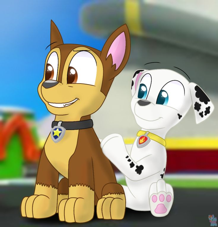 Chase And Marshall Are Cute Together By Rainboweevee Da On Deviantart Chase Paw Patrol Marshall Paw Patrol Panda Art