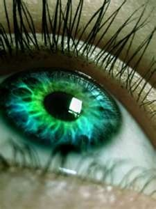 Bright Blue Green Eyes - Bing Images