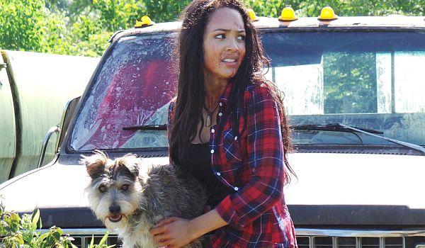Night of the Wild trailer: Ο σκύλος είναι ο καλύτερος φίλος του ανθρώπου, εκτός αν... - Horrorant