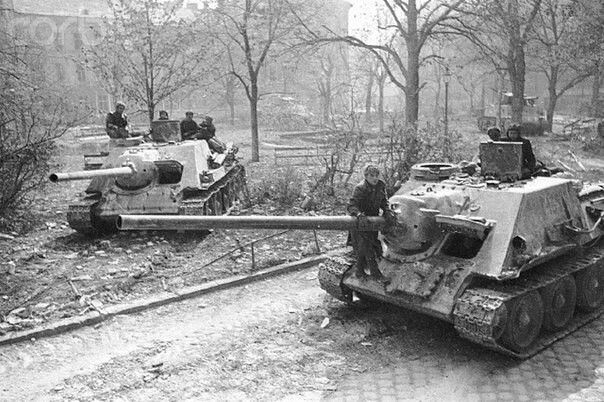 Medium self-propelled guns SU-100 in Wien 1945 / średnie działa samobieżne SU-100 w Wiedniu, 1945 rok.