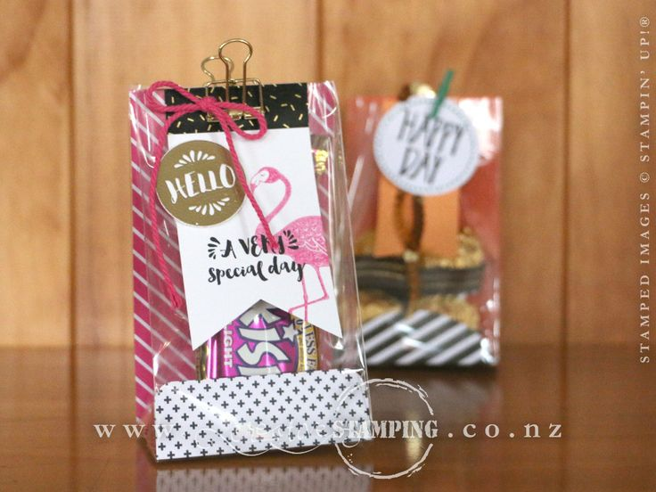 A gusseted cellophane gift bag using the Pop of Pink Product Suite; inspired by projects from the Perfectly Wrapped Project Kit.  www.creativestamping.co.nz | Stampin' Up! | 2016-2017 Annual Catalogue