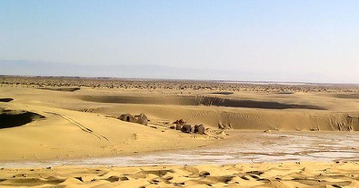 Humedad en los desiertos. Los desiertos cubren el 20 por ciento de la superficie de la tierra; aún así, son las regiones más áridas del mundo. Su falta de humedad es particularmente llamativa, ya que las áreas calurosas pueden retener mucha más humedad. Las selvas tropicales, por ejemplo, combinan aire caliente y altas precipitaciones para producir algunas de las zonas con ...