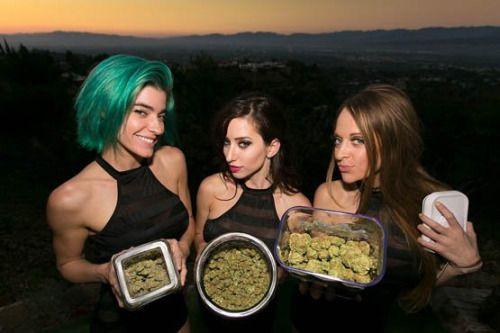 Une majorité dEtats US a légalisé la marijuana médicale...
