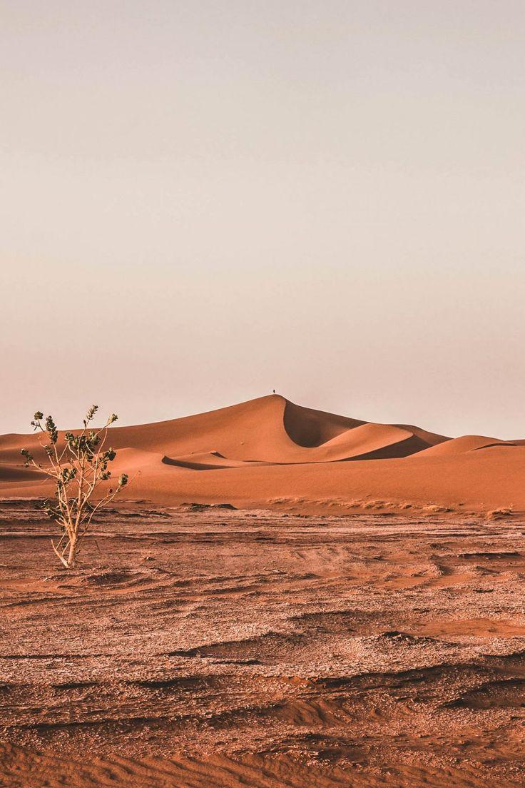 le d u00e9sert du maroc   les dunes sublimes du d u00e9sert de m