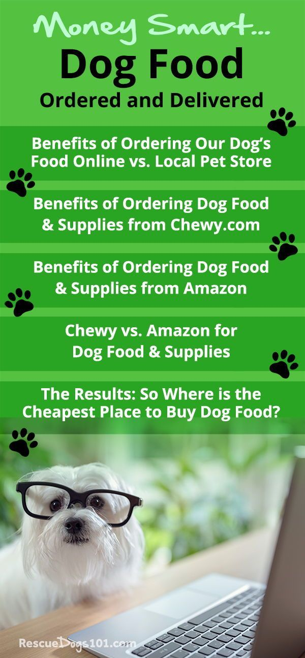 Best Place To Buy Dog Food And Supplies Online Dog Food Recipes Dog Food Online Dog Supplies