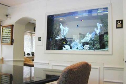 Морской аквариум в раме