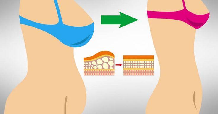 Что такое кортизоловый животик, или Откуда берется стрессовый жир?